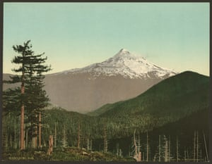 Mount Hood in front of the national forest, Oregon