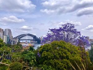 At Wendy Whiteley's 'secret garden' in Sydney's Lavender Bay