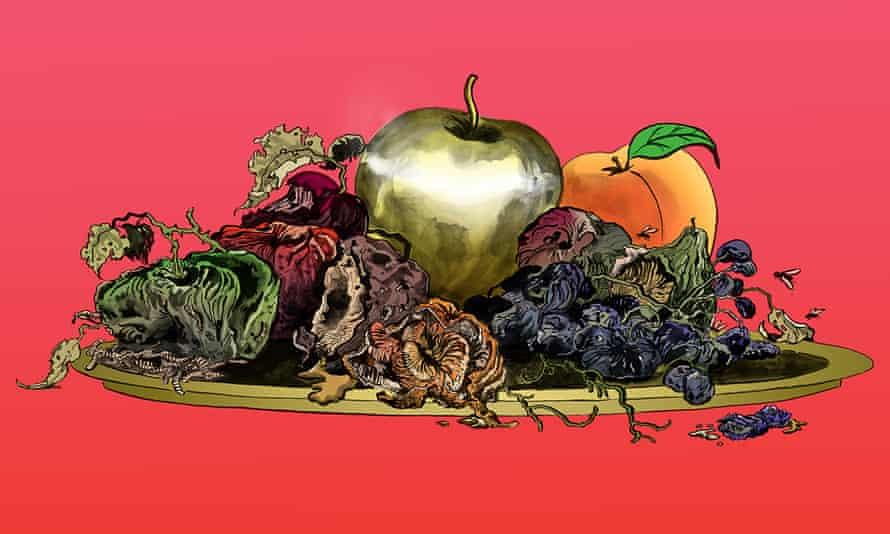 illustration of rotting fruit