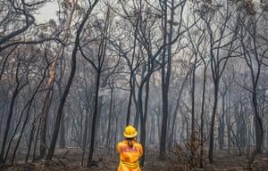 Guardian journalist Helen Davidson surveys the bushfire destruction in William Street, Balmoral