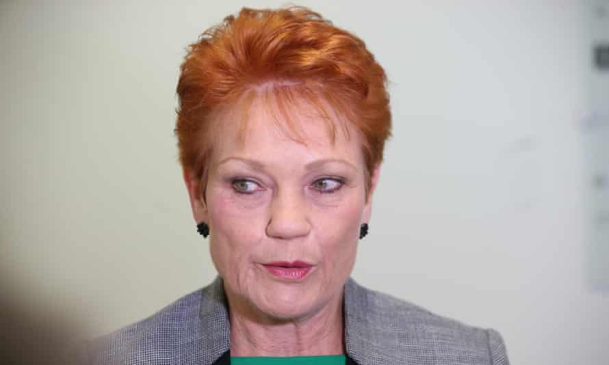 Sunrise host David Koch told Pauline Hanson (pictured) that the Christchurch killer's 'terrorist manifesto almost reads like One Nation immigration and Muslim policy'.