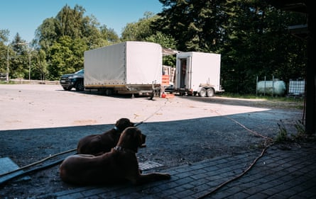 Kurten's van with two dogs relaxing in front