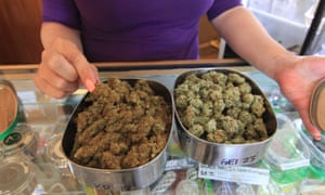 The citizens who challenged the ban said marijuana grown under the government system did not allow them to control the strains and dosages of their medical treatment.