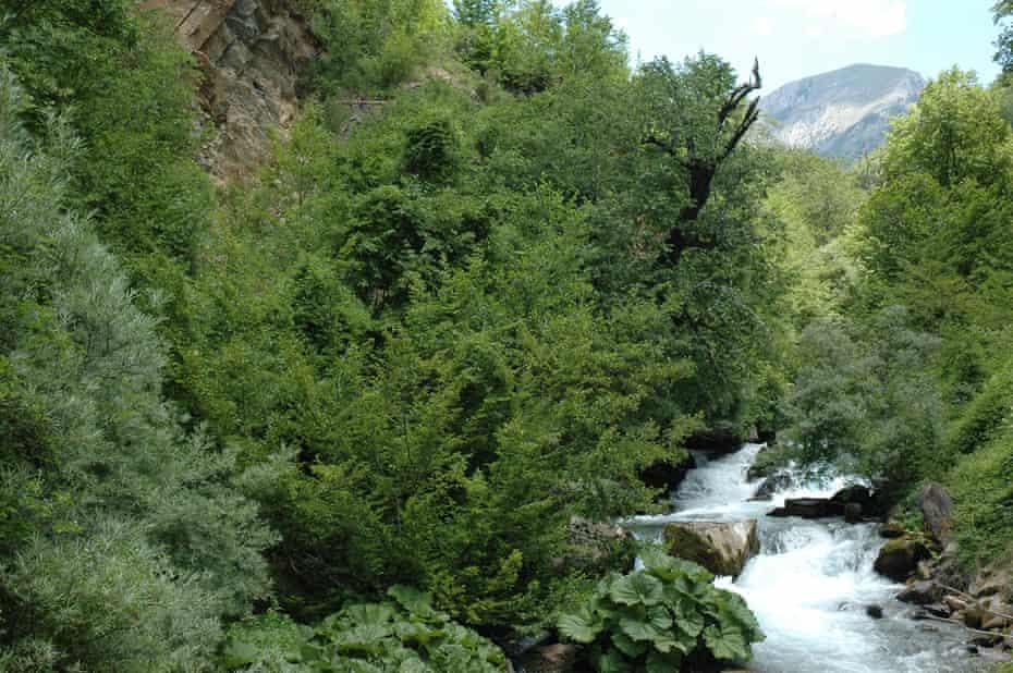 The Mala Reka river in Mavrovo national park Macedonia