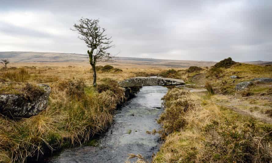 A clam bridge (single clapper bridge) over Wallabrook on Dartmoor.