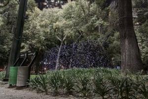 Chapultepec Park, Mexico City, Mexico - PM2.5 10 – 20 micrograms per cubic metre
