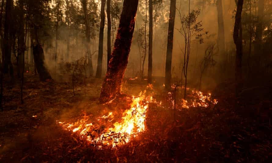 A spot fire between Orbost and Cann River in East Gippsland, Victoria, 5 January 2020