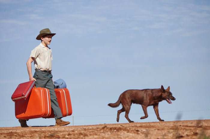 Red Dog: True Blue film-makers on what makes a dog a star