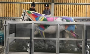 The equine water treadmill at Writtle University College.