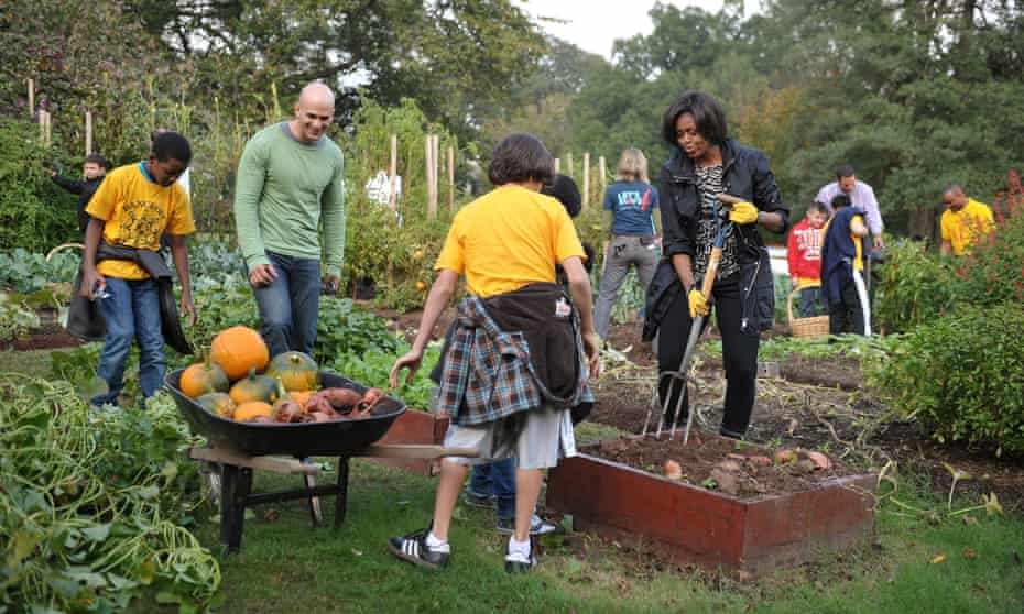 Michelle Obama and White House chef Sam Kass (in green) digging for sweet potatoes in the White House kitchen garden in 2010.