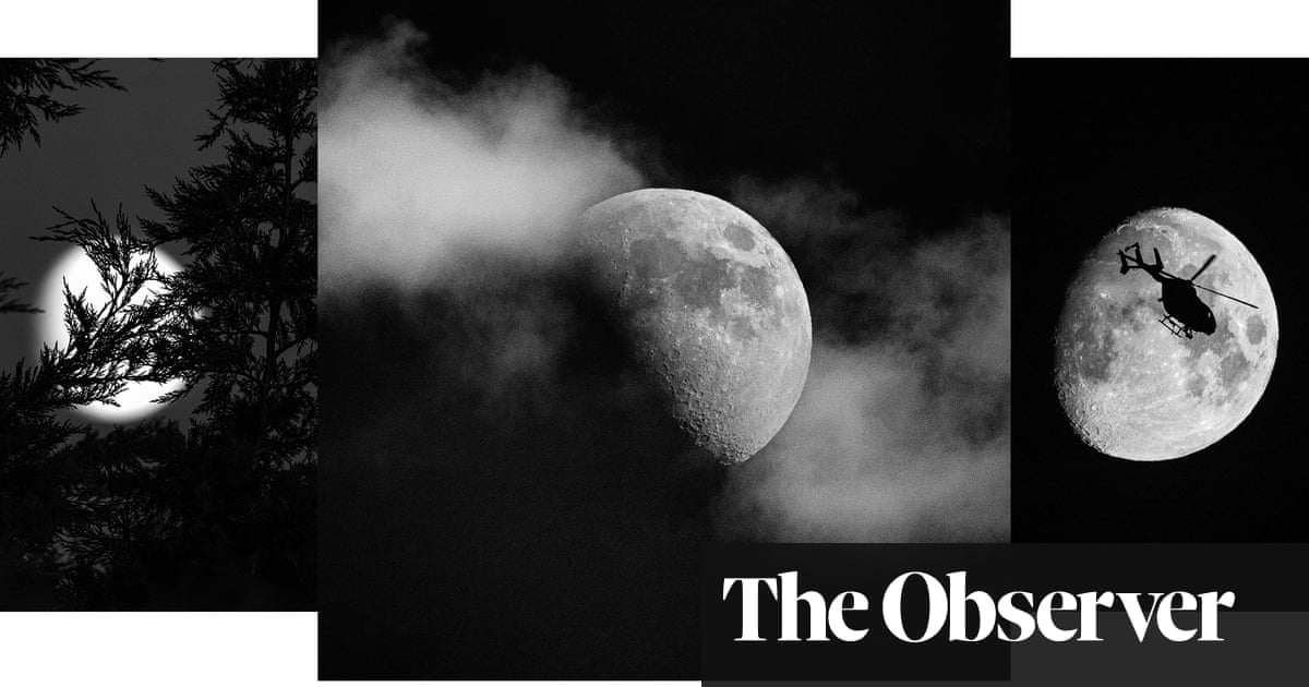 Whole of the moon: Tim Easley's lunar photography - in pictures