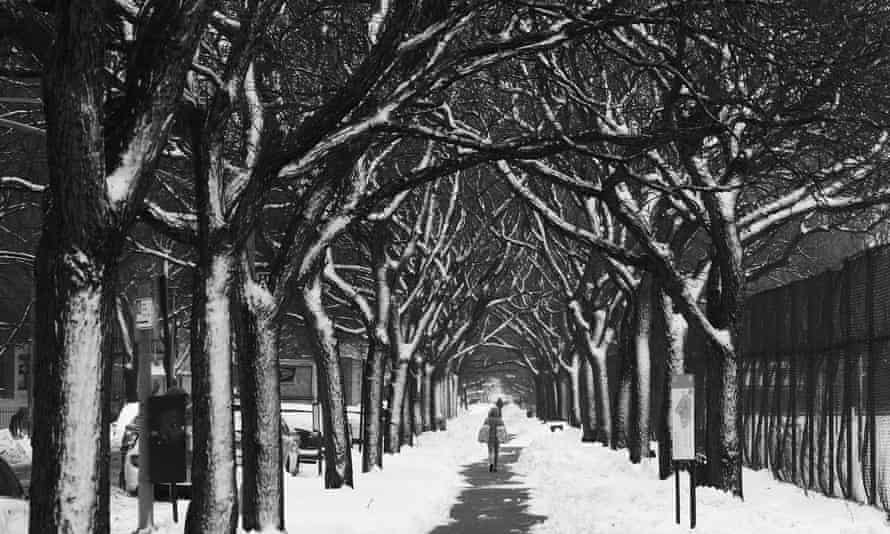 Winter snow storm Orlena comes to Prospect Park in Brooklyn, New York in the US on 2 February 2021