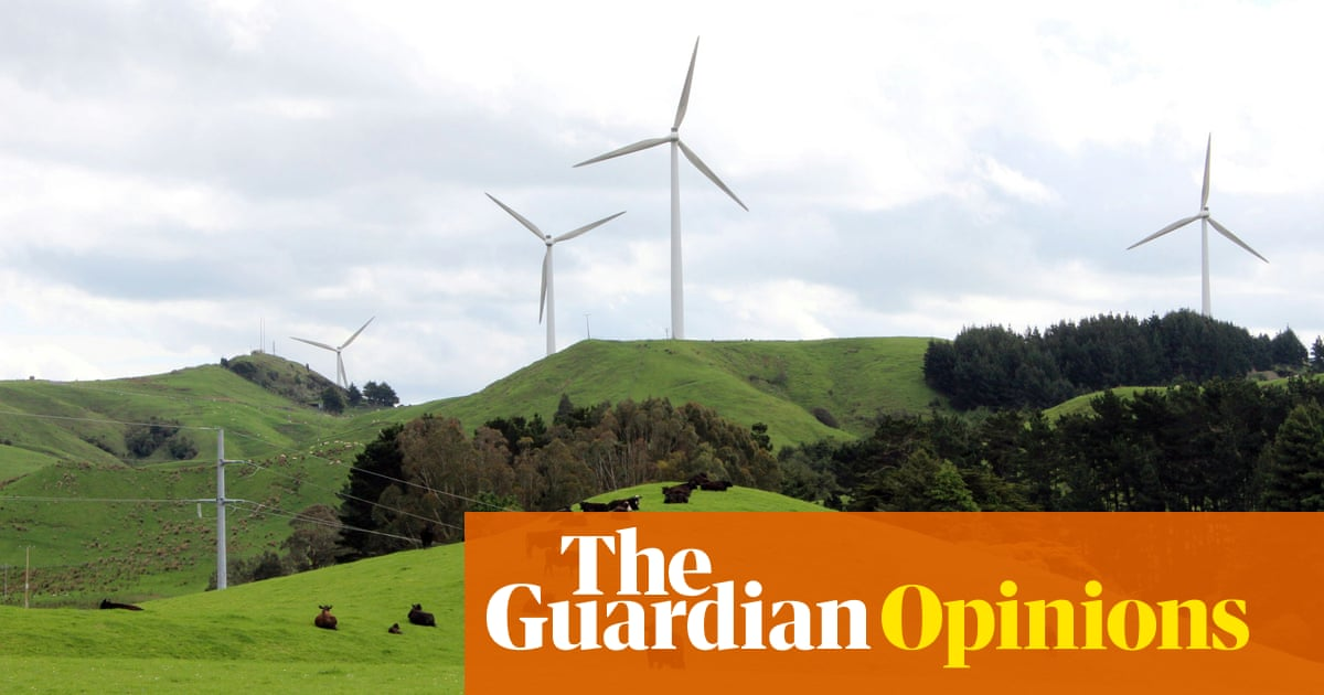 New Zealand climate commission proposals will need a revolution in policy | Robert McLachlan