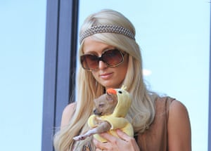Move over fun-sized canines - the blockchain is Paris Hilton's current obsession.
