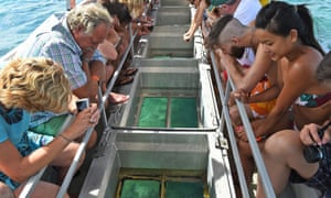 Tourists looking at coral through a glass-bottomed boat on Australia's Great Barrier Reef
