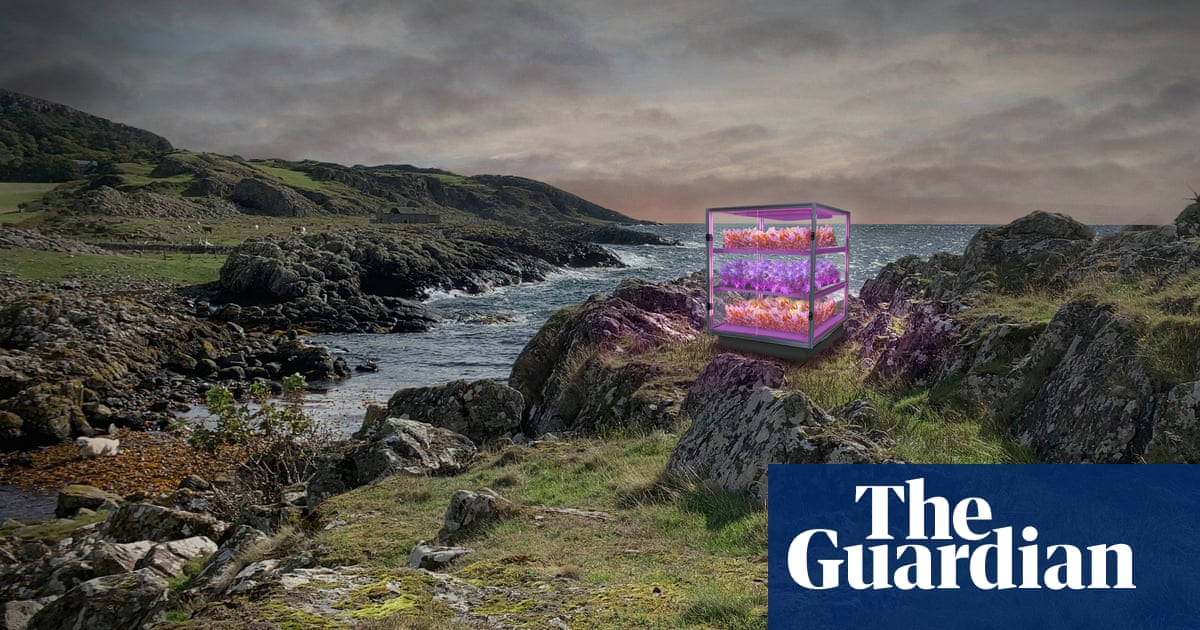 Ten projects chosen for 'once-in-a-lifetime' UK festival of creativity