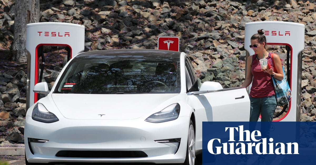 From Virgin to Tesla: Why Companies Go Cool on Public Ownership