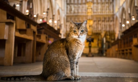Doorkins Magnificat, who was a resident at the historical Southwark Cathedral for 11 years.