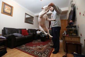 Jabz, a member of the Collective, makes his dog Bruce jump for a biscuit as his mother relaxes at home in Abbey Wood, south-east London