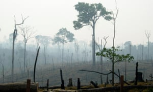 Deforested land in the Brazilian Amazon