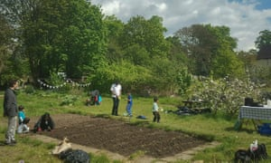 The Park Road allotments in west London. Eviction orders have been issued.