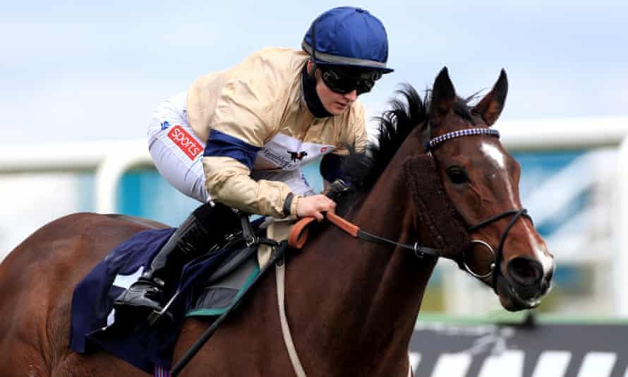 هولی دویل - شاید در حال حاضر دومین آشنای سوار بریتانیا - تلاش خواهد کرد تا به عنوان اولین قهرمان اسب سواری قهرمان شود.