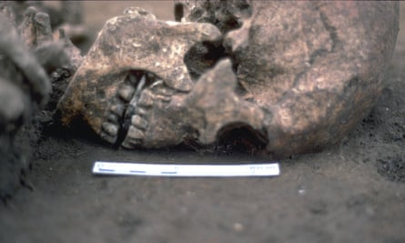 A close-up of the skull with a flat stone wedged between the jaws