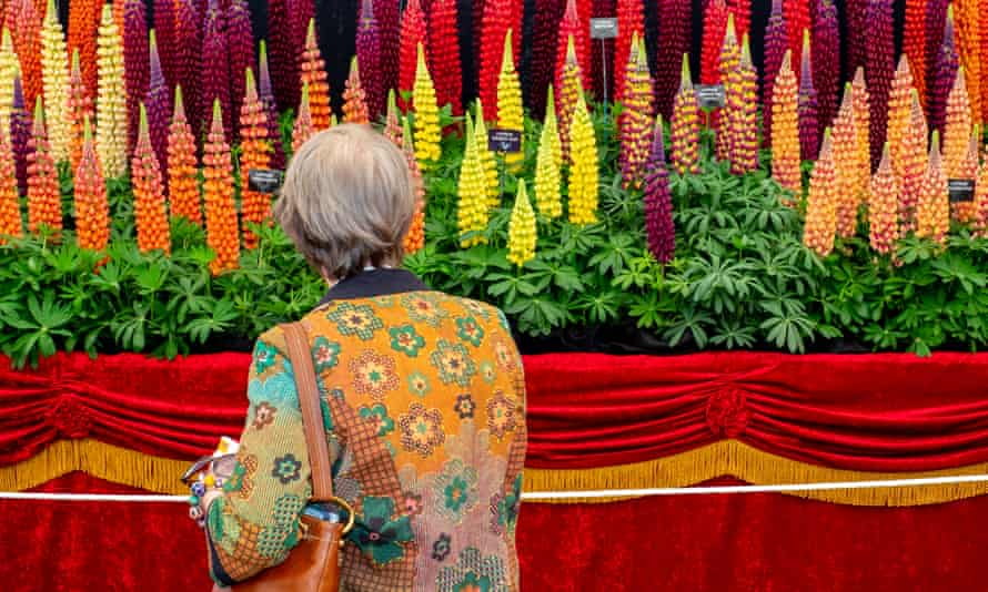Show us the way: Chelsea gardeners will learn that there is more to life than lupins.