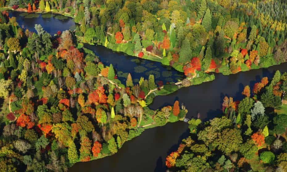 autumnal woods at Sheffield Park Garden, East Sussex