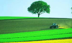 Tractor ploughing field