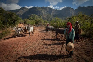 Farmers in Shan state
