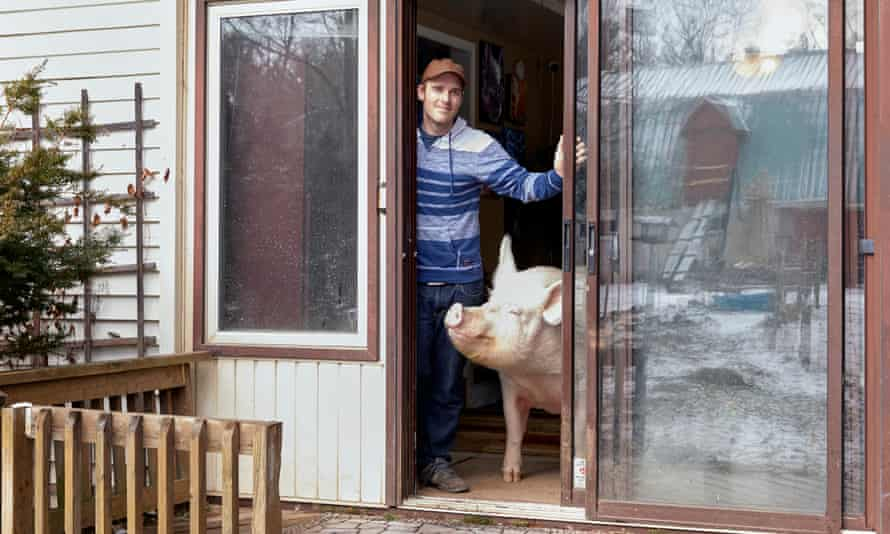 Steve Jenkins and Esther the pet pig