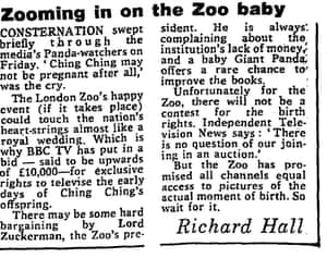 Observer, 6 September 1981, Zooming in on the zoo baby