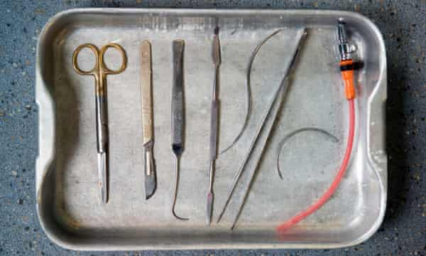 A selection of Holder's tools.