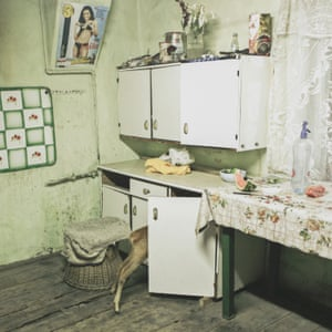 Foraging for food A deer searches cupboards in the Kovary family's kitchen in Copșa Mică in 2010