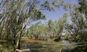 Federally biodiversity funding and the long-running Landcare program to tackle land degradation are facing the biggest annual cuts.