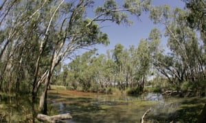 The Murray-Darling basin