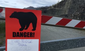 A warning sign in Anchorage, Alaska, after a 16-year-old runner was recently killed by a black bear. There have only been six fatal bear attacks in the state in 130 years.