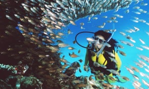 Six diving and snorkelling deaths in a week spark calls for