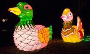 Light sculptures depicting water birds
