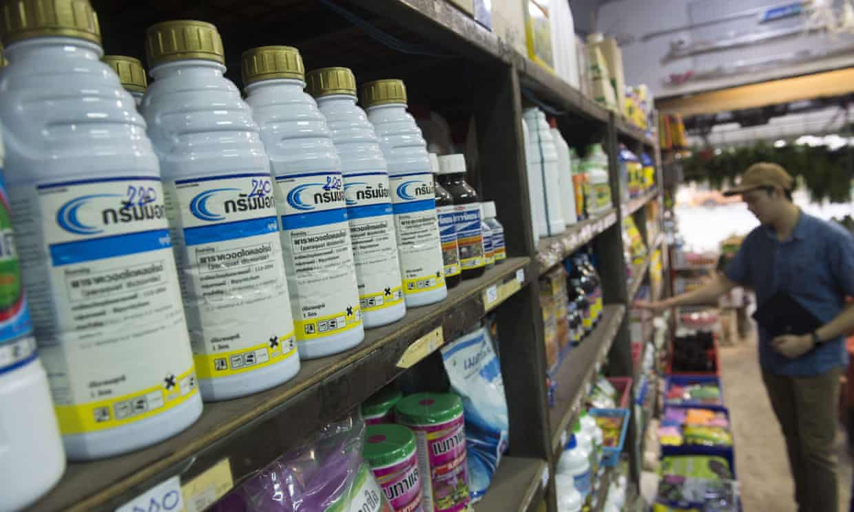 Bottles of paraquat are displayed for sale at a gardening shop in Bangkok. Thailand is banning this and other chemicals from 1 December despite US pressure.