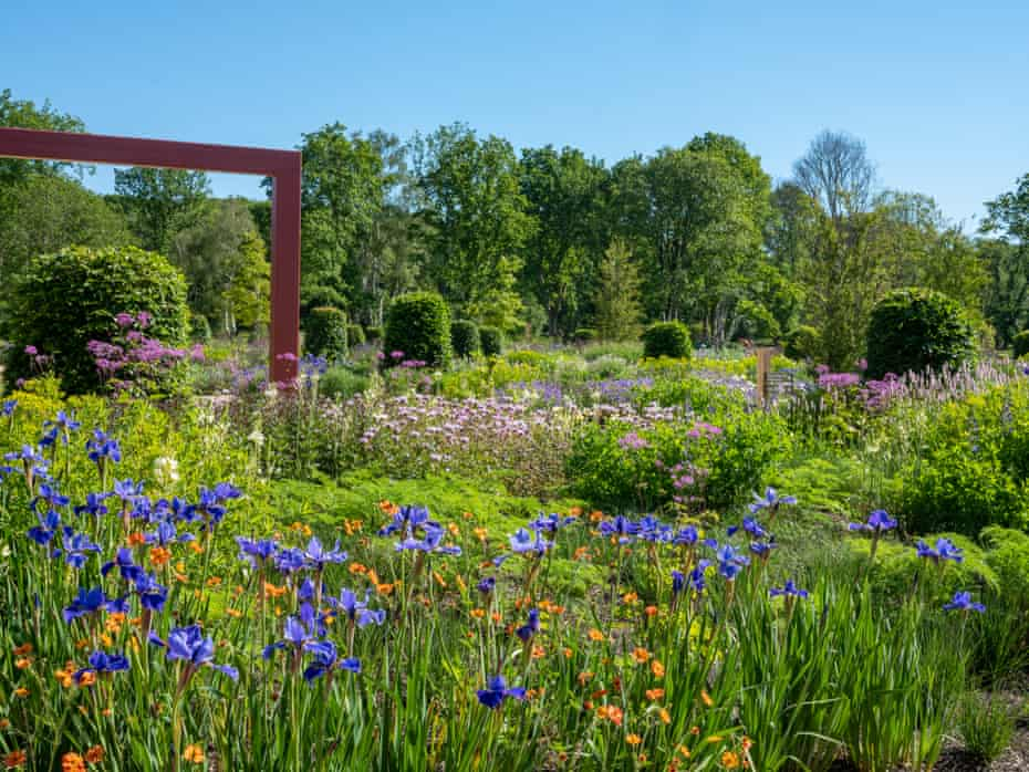 A metal space-frame in the welcome garden behind 'Silver Edge' irises and 'Totally Tangerine' geums.