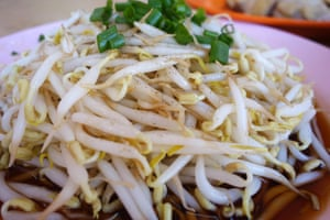 Close up of fresh bean sprouts at local restaurant in Ipoh