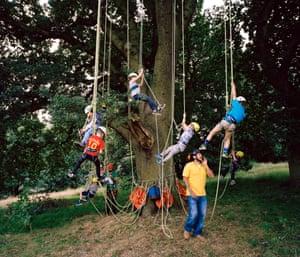 Tree Climbing Party