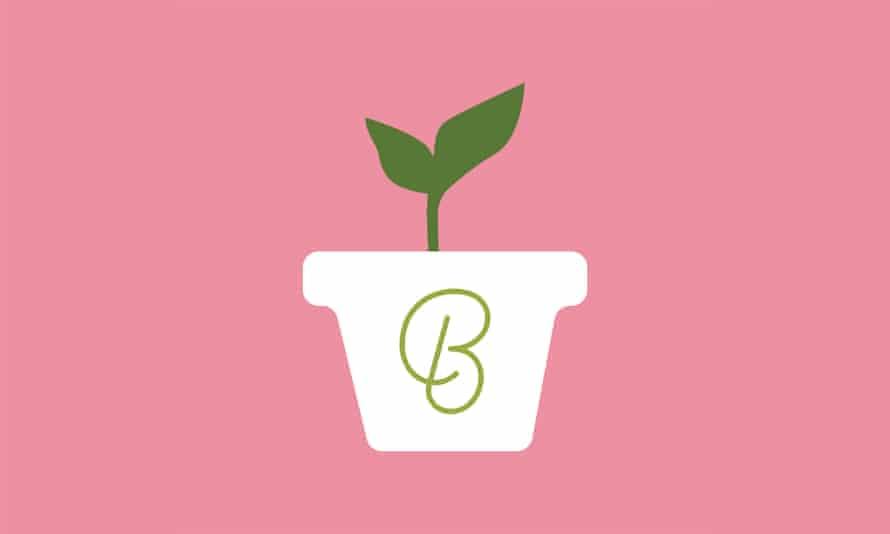 Beginner podcast logo