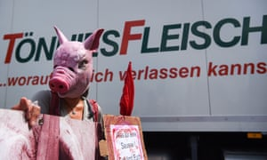 A protestor wearing a pig mask in front of the Tönnies headquarters in Rheda-Wiedenbrueck, Germany.