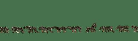 Line of ants