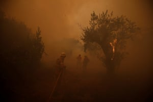 Firefighters battle a forest fire in the village of Carvoeiro.