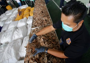 Thai customs officials load African pangolin scales into a sack in Bangkok, Thailand