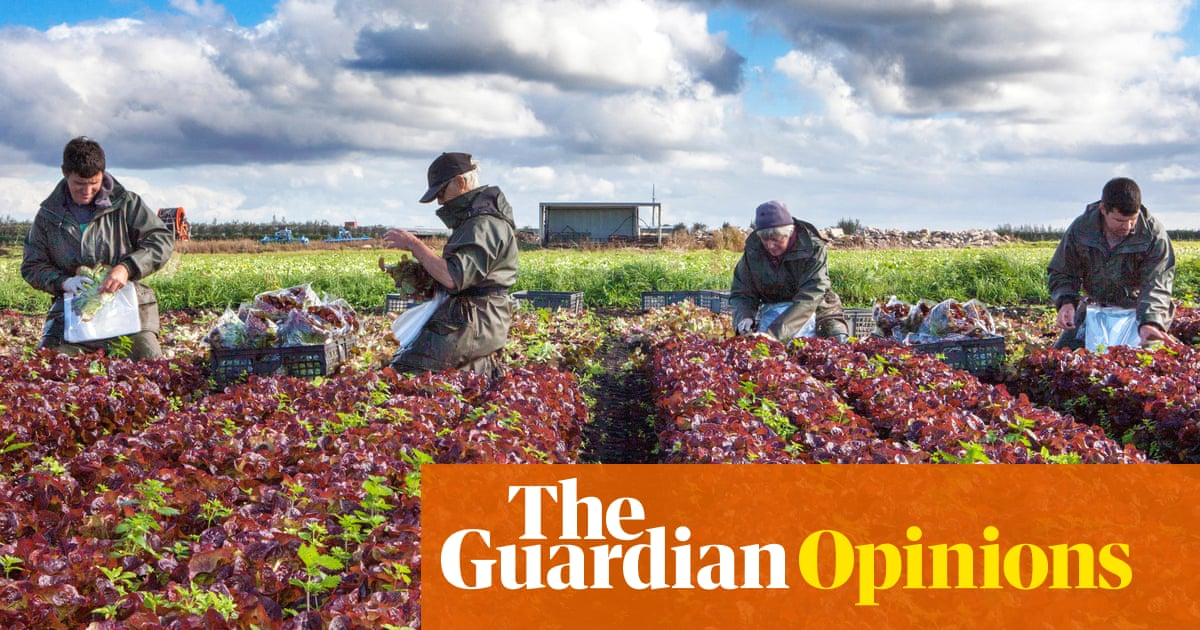 The Guardian view on the future of farming: let's think about food